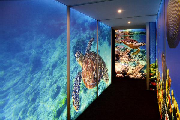 beleuchtete Wand mit dem Motiv eines Schiffwracks beleuchtet mit dem LED-Modul integriert in den Aluminiumrahmen Unterwasserwelt